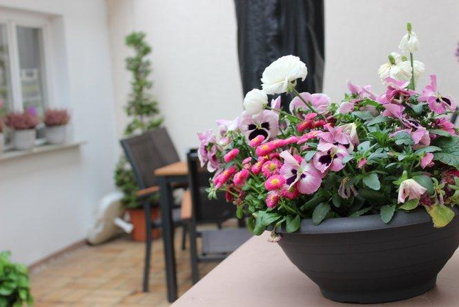 Elternhaus der Elterninitiative krebskranker Kinder Erlangen e.V.